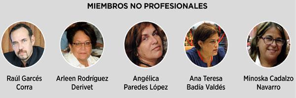 Miembros no profesionalizados