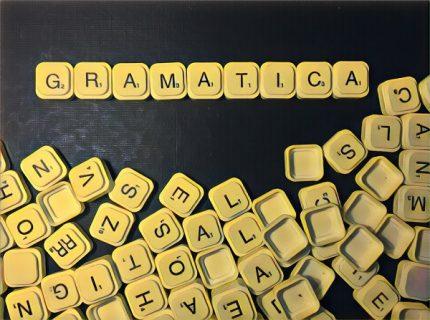 """""""Los estudios de lingüística (gramática incluida) deben reservarse para las carreras universitarias de educación en letras y humanidades""""."""